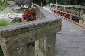 Bridge_Railing_focus_stack